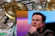 به گفته ایلان ماسک: قیمت بیت کوین زیاد بهنظر میرسد